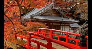 Nhạc Thiền Zen Garden