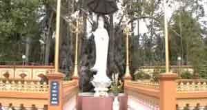 Xin Phật đưa con về