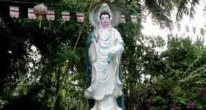 Làm cách nào để niệm Phật buông bỏ