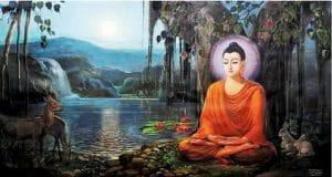 Tư duy về tri kiến Phật