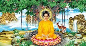 Dòng sông tâm thức: Phật Nguyên thủy
